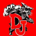 Logo - Delphos City Schools